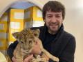 Шовковский принес домой брошенного львенка
