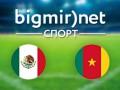 Мексика – Камерун: Где смотреть матч Чемпионата мира по футболу 2014