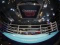 В Лондоне остановили Европейский лицензионный турнир по боксу
