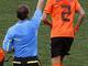 Ван дер Виль мимоходм получает желтую карточку