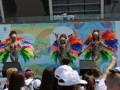 В Киеве с рекордом отпраздновали Олимпийский день