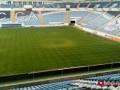 Стадион Черноморец заметно зазеленел перед матчем против Львова