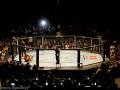 Уайт: 45 процентов аудитории UFC - женщины