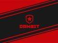 Gambit Esports получили приглашение на новый турнир серии IEM