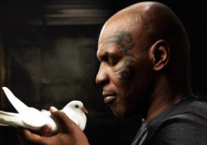 Бокс и голуби: Майк Тайсон признался, что начал драться из-за птиц