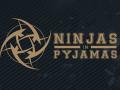 Стали известны зарплаты игроков по CS:GO и Dota 2 в NiP