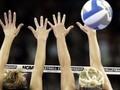 Волейбол: Россия разгромила Болгарию, Беларусь уступила Бельгии
