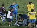 В Бразилии полицейская собака укусила игрока во время матча