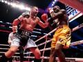 Гвоздик - о травме Стивенсона: Такое случается в боксе, за это мы получаем гонорары