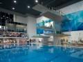 Киеву доверили право провести чемпионат Европы по прыжкам в воду
