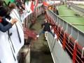 Фанат Локомотива отпраздновал гол с командой и феерично вернулся на трибуны