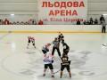 Хоккей: Донбасс забросил 14 шайб в ворота Белого Барса
