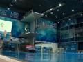 Украина примет чемпионат Европы по прыжкам в воду в 2019 году