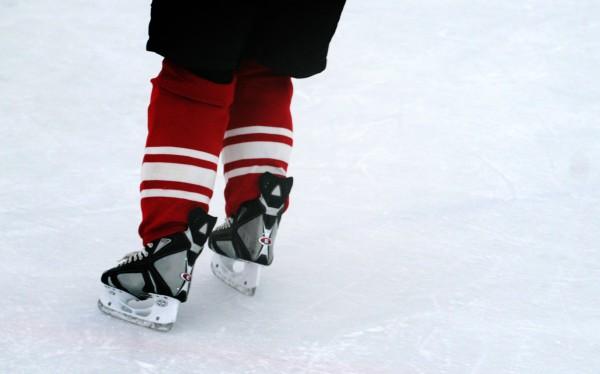 Виды коньков для хоккея