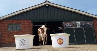 Корова определила победителя Лиги Европы