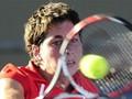 FedCup-2010: Испания и Австралия определят победителя в парной встрече