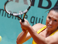 Roland Garros: Янкович добывает путевку в полуфинал