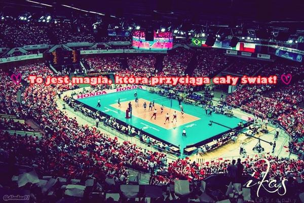 Игра Польши и Сербии на чемпионате мира