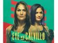 Стал известен полный кард турнира UFC на 13 июня