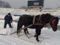 Во Второй лиге Украины расчищали стадион с помощью лошадей
