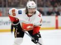 Ягр покинул НХЛ и вернулся в Чехию