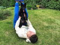 Коноплянка сразился в мастерстве с собакой