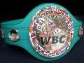 Рейтинг боксеров WBC: Усик опустился на одну позицию, Редкач стал вторым