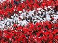 Австрийские фанаты освистали гимн России перед матчем отбора на Евро-2016