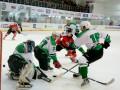 Хоккей: Донбасс забросил 20 шайб Рапиду