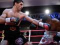 Рейтинг WBA: Далакян первый, Гвоздик вошел в тройку