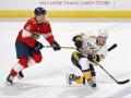 НХЛ: Нэшвилл уступил Флориде, Оттава - Калгари