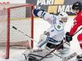 УХЛ: Донбасс, Кременчук и Белый Барс одержали победы в последнем туре