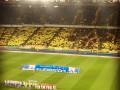 Красивое модульное шоу перед матчем Динамо - Шахтер (видео)