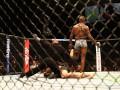 Джонс – Густафссон: видео нокаута UFC 232