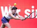 Свитолина может пропустить US Open