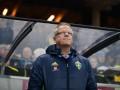 Тренер сборной Швеции - об Ибрагимовиче: У нас есть другие герои